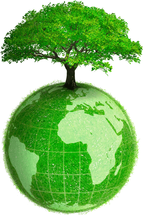 46-463744_eco-friendly-products-earth-with-tree-png